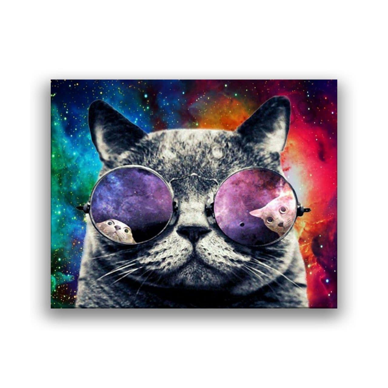 cat in sun glasses1